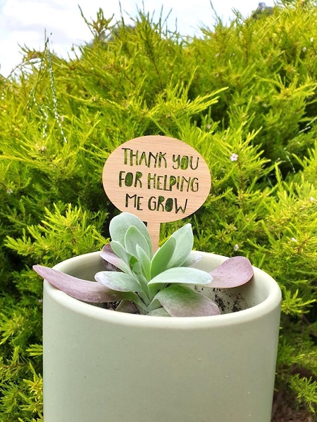 Thank you Teacher Gift Plant Stake