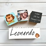 Lion Wooden Birth Block Set