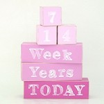 Milestone Baby Blocks - Baby Pink, Pink and Hot Pink