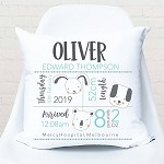 Personalised Dinosaur Birth Print Cushion