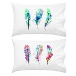 Feathers SET Pillow Case